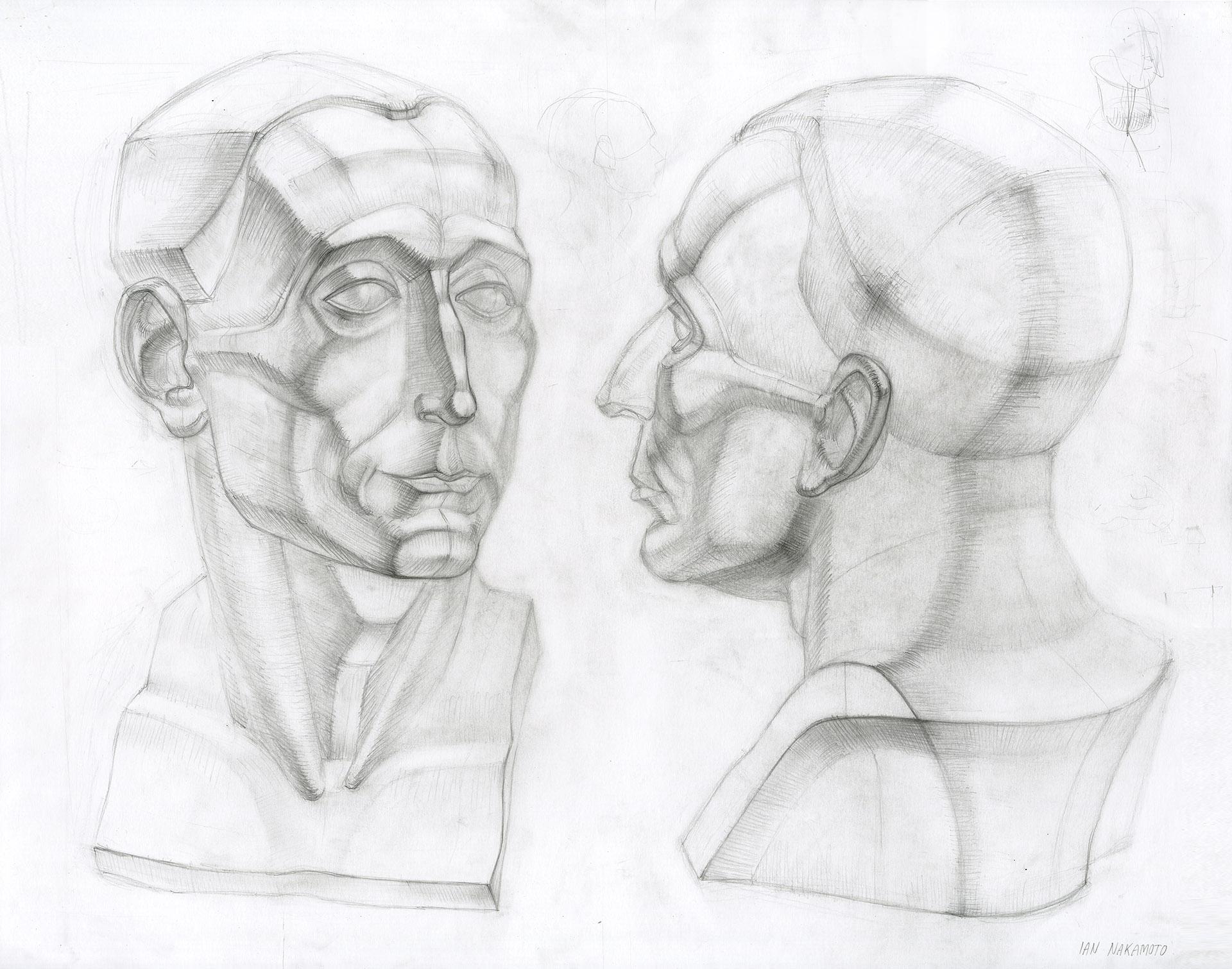 Ian-Nakamoto-Planar-Drawing-Academic-Study-Donatello-Bust-1920