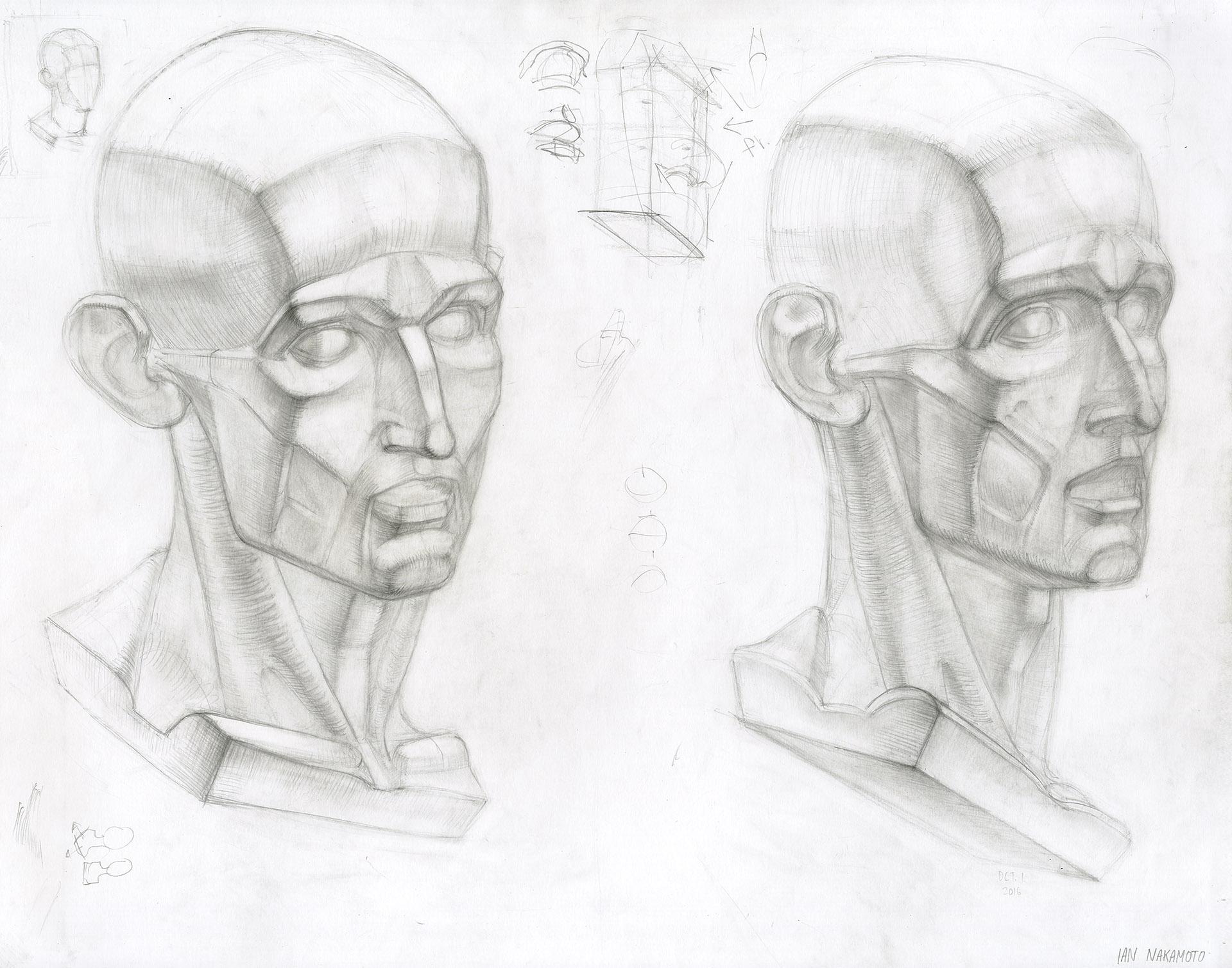 Ian-Nakamoto-Planar-Drawing-Academic-Study-Houdon-Busts-B-1920