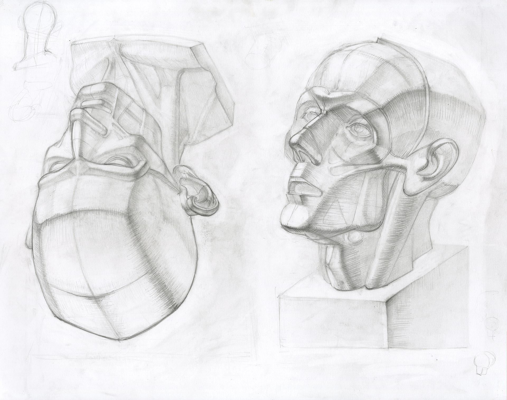 Ian-Nakamoto-Planar-Drawing-Academic-Study-Houdon-Corpse-Flayed-Bust-1920