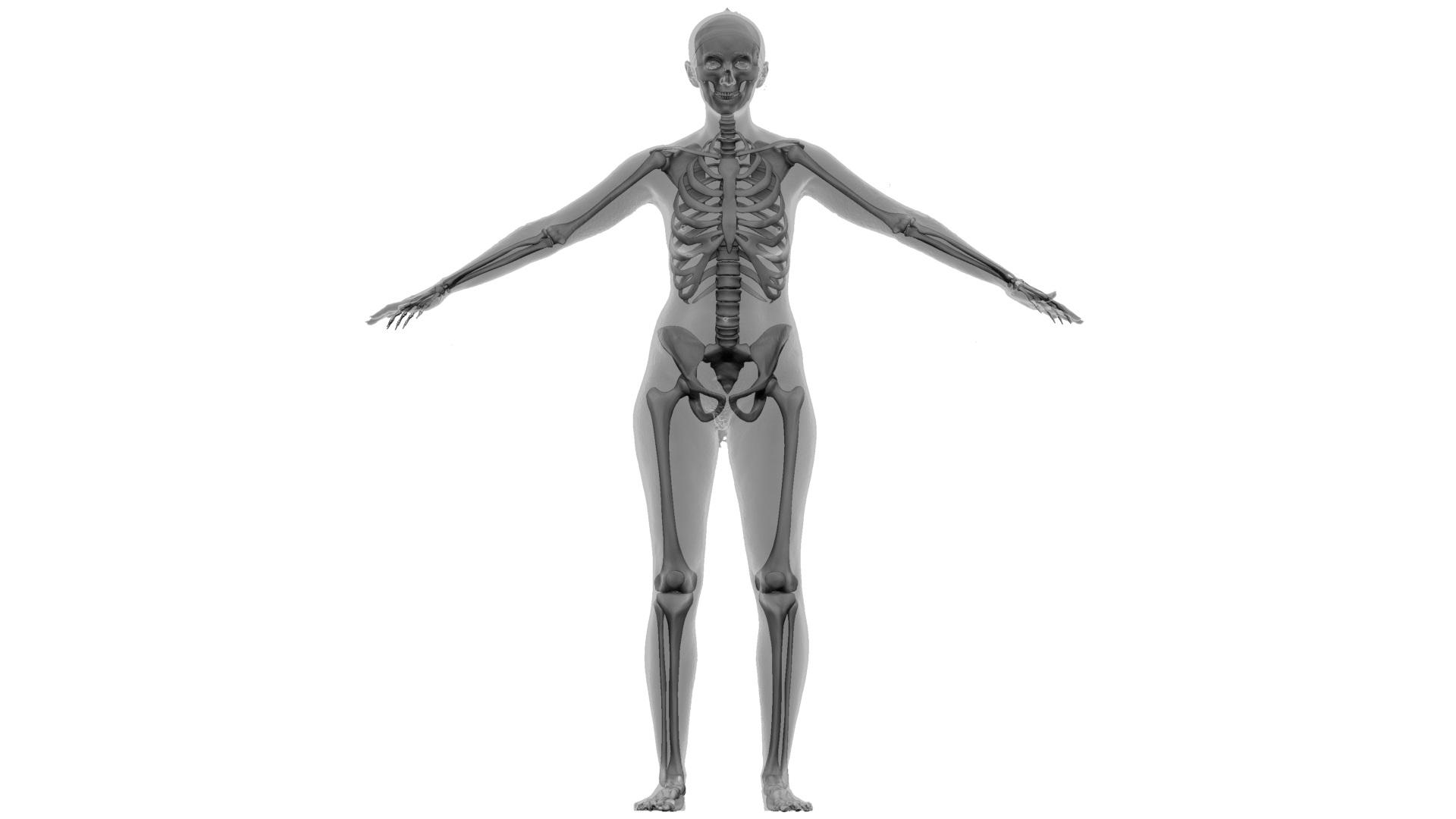 Ian_Nakamoto_Mel_Keiser_Skeleton_render